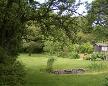 John Terry home back garden